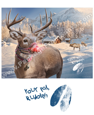 Rudolph at The North Pole