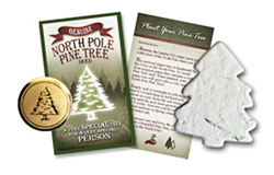 Genuine North Pole Pine Tree Seed<sup>&trade;</sup>